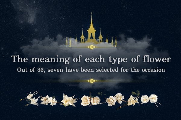 The meaning of Sandalwood flowers